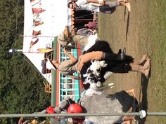 If in doubt - go for the ostrich costume... #bestival #wildlife #lolagracecamper