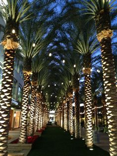 For a day trip or a night on the town in Scottsdale, Ariz., Kierland Commons is the place to go for eats and shopping. #GeorgeTupak