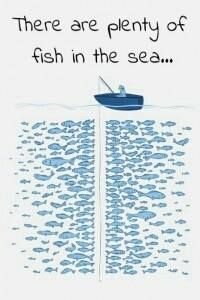 hahah this is kinda funny, I don't think necessarily true.but funny hah Just For Laughs, Just For You, Plenty Of Fish, E Mc2, Poster S, Print Poster, Sea Fish, Fish Fish, Story Of My Life
