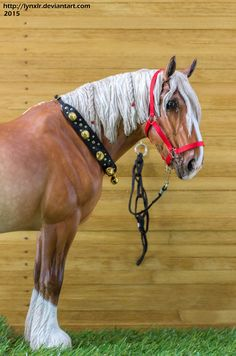 Collar with bells and a simple nylon halter. by Alisa Bayalieva Photographer: Marina Oblakova. Everybody go look at her Tack for Model Horse Board! Nice stuff!!!