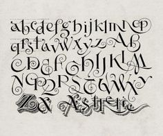 """font face=Times New Roman New Zanerian Alphabetsbr/fontifont face=Times New Roman Paxton Zaner, """"Letting Alphabet Designs"""" Alphabet Design, Hand Lettering Alphabet, Calligraphy Letters, Typography Letters, Caligraphy, Handwriting Fonts, Penmanship, Cursive, Creative Lettering"""