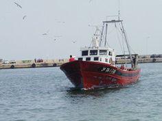 """La Carm sostiene que el Mar Menor, con un incremento de las capturas del 22 %, """"está vivo""""   http://www.industriaspesqueras.com/noticias/en_portada/36213/la_carm_sostiene_que_el_mar_menor_con_un_incremento_de_las_capturas_del_22__esta_vivo_.html"""