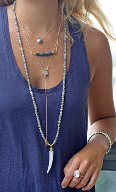 LABRADORITE agate horn necklace | Kei Jewelry