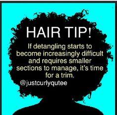 Detangling Hair Tip