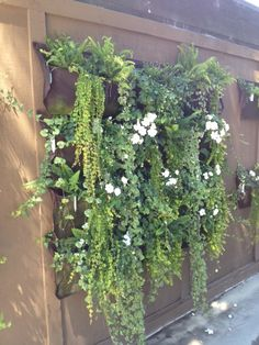 Create a wall garden with woollybags Vickers Nelson Sheppard Garden Fencing, Lawn And Garden, Garden Pots, Garden Walls, Small Gardens, Outdoor Gardens, Vertical Gardens, Small Garden Greenhouse, Growing Greens