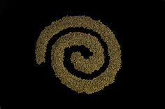 The spiral of coffee means the research we are making inside the film the Mystical Seed..  #TheMysticalSeed #coffee #documentary #film #coffeeculture #ethiopia #landoforigins #coffeeorigin #coffeelovers #bunna #forests  #dokufest  #coffeeroutes #origins