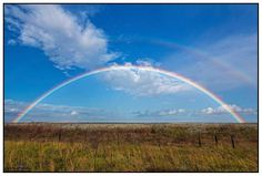 kouga rainbow