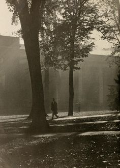 Athena Yearbook, 1955. A student strolls in College Green on a sunny afternoon. :: Ohio University Archives