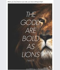 spiritualinspiration: As a believer in Jesus Christ, you are called to live a bold, confident and overcoming life. You don't have to live under the weight and pressure of fear. You don't have to live with daily anxiety. Because of Jesus, fear, worry and Bible Verses Quotes, Bible Scriptures, Scripture Verses, Lion Bible Verse, Jesus Quotes, Christian Life, Christian Quotes, Christian Warrior, Proverbs 28