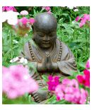 'May All Beings Be Free' Garden Monk - Buddha Garden Statues garden statues
