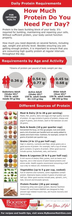 Inforgraphic How Much Protein Do You Need Per Day