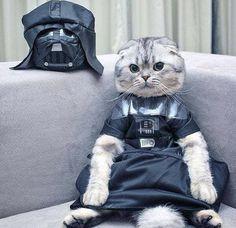 El verdadero Darth Vader.