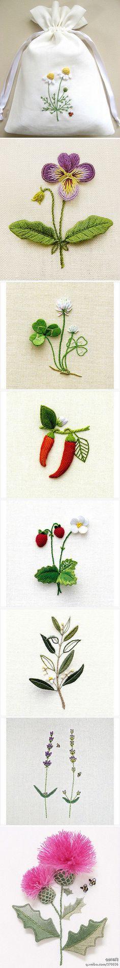 美美的花花 - 堆糖 发现生活_收集美好_分享图片