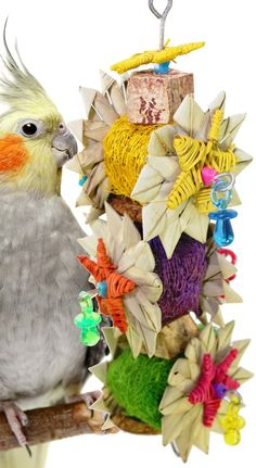 01098 Palm Star is a dream crunch for those medium to large-sized feathered friends in your family. Parakeets, Cockatiel, Diy Chinchilla Toys, Bird Toys, Love Birds, Pet Birds, Parrot, Palm, Stars