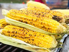 Kukorica minden mennyiségben