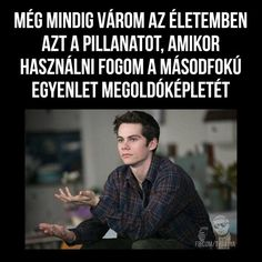 Mind Trick Questions, Really Funny, Funny Cute, Fun Fair, Lol So True, Dylan O, Funny Moments, Teen Wolf, Funny Photos