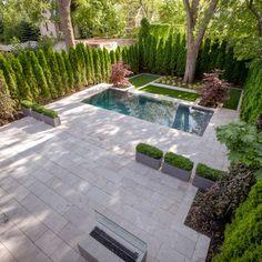 Small Pool, tree fence