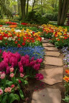 Amazing DIY Garden Path and Walkways Ideas Large flagstone pavers will walk you through a paradise of lilies, tulips, hyacinths and daffodils.Large flagstone pavers will walk you through a paradise of lilies, tulips, hyacinths and daffodils. White Pebble Garden, Flower Garden Images, Tulips Garden, Daffodils, Ranunculus Flowers, Flagstone Pavers, Prayer Garden, Path Ideas, Walkway Ideas