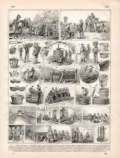 1897 Winemaking Antique Print Vintage Lithograph by Craftissimo