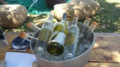 Vergenoegd Low Wine Estate is located in Stellenbosch. The ideal establishment to enjoy wine tasting, a picnic or delicious restaurant meal. Delicious Restaurant, Picnic Baskets, Order Book, Wine Tasting, Cape, Menu, Lunch, Seasons, Snacks