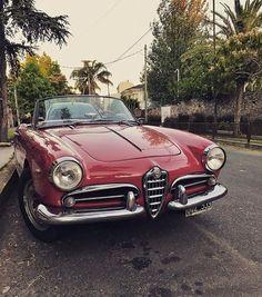 The italian dream. Alfa Romeo Giulia Spider.#khavaleri #ALFAROMEOhttps://ro.pinterest.com/KhaValeri/