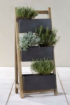 Displaying your greenery just got a whole lot more chic thanks to our salvage effect ladder planter!