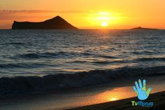 Hawaiian day #TuMundoItaly #FollowTuMundo #travel #traveling #socialenvy #shopstemdesigns  #vacation #visiting #instatravel #instago #instagood #trip #holiday #photooftheday  #fun #travelling #tourism #tourist #instapassport #instatraveling #mytravelgram  #travelgram #travelingram #igtravel