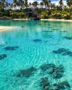 Blue Lagoon, Bora Bora, French Polynesia.