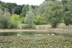 Le lac Chatel, Paris, Monuments, Photos, River, Mountains, Nature, Outdoor, Childhood