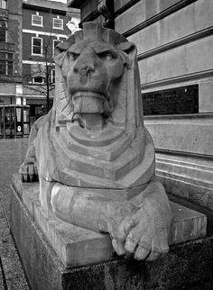 Lion, Nottingham