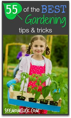 55 of the Best Gardening Tips and Tricks. Veggies, herbs, containers, flowers. It's all here! www.SeeMomClick.com
