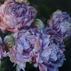 Marcella Kaspar - Are these peonies? Art Floral, Watercolor Flowers, Watercolor Paintings, Oil Paintings, Botanical Art, Beautiful Artwork, Art Oil, Painting Inspiration, Flower Art