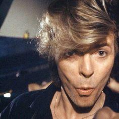 OMG: Adorable David Bowie
