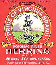 Wholesale Lot 25 Pride of Virginia Herring Can Labels Mundy Point, Va. 15 oz. #PrideofVirginia