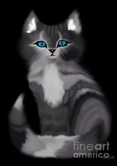 Blue Eyed Kitty by Nick Gustafson