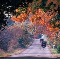 Amish Country in the Fall ➤ http://media-cache8.pinterest.com/upload/21603273182067338_oFKbCFnq_222.jpg - via Maria Moore