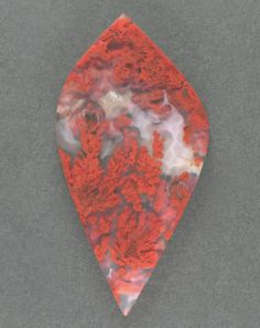TEXAS!  Exceptional !! Woodward Ranch Plume Agate Cabochon