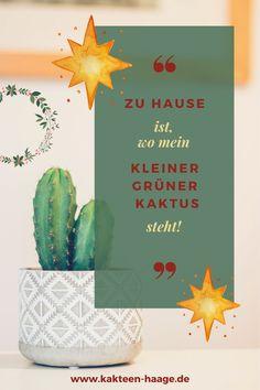 """""""Zu Hause ist, wo mein kleiner grüner Kaktus steht!"""" Stimmt, und bei Kakteen-Haage aus der Blumenstadt Erfurt ist es auch noch richtig gemütlich in den Gewächshäusern mit ihren stacheligen Bewohnern. #HaageLife #UlrichHaage #Kaktusgärtner"""
