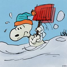 Shoveling snow with Snoopy .. i wish i was doing it with Snoopy.. but no.. just me and this DAMN driveway