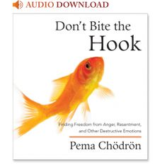 Don't Bite the Hook: Finding Freedom from Anger, Resentment, and Other Destructive Emotions: 9781590308547: Pema Chodron: Books: Shambhala P...