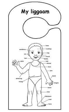 ek versorg myself inkleurprente Grade R Worksheets, Preschool Worksheets, Preschool Learning, Classroom Activities, Preschool Assessment, Tracing Worksheets, Classroom Ideas, Afrikaans Language, Afrikaans Quotes