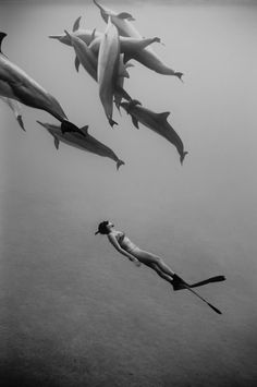 If I could snorkel with spinner dolphins, I would be SO HAPPY.