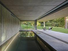 piscina interna com vista para o jardim