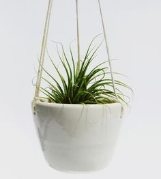 Small Ceramic Hanging Planter by Stuck in the Mud Pottery on Scoutmob Shoppe