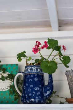 Jeska Hearne Tea Shed House Plants Shed Interior, Interior Garden, House Plants Decor, Plant Decor, Yorkshire, Witchy Garden, Potted Geraniums, Garden Cabins, Cactus