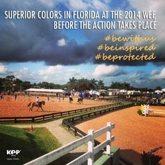 KEP Italia is where the action takes place: visit our stand at the WEF VENDORS ROW at Palm Beach Equestrian Center!  #WEF2014 #KEPItalia