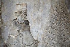 Persepolis -- tree of life