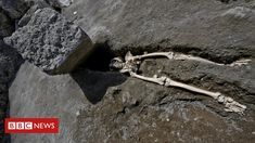 Decapitated skeleton uncovered at Pompeii, strange discovery found inside supposed hawk mummy sarcophagus, bodies buried with extraordinary riches unearthed at Ancient Roman city. Pompeii Italy, Pompeii And Herculaneum, Pompeii Pictures, Giant Boulder, Roman City, Man Kill, Archaeological Site, Pet Gifts, Pompeii