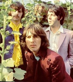 the beatles 1968 - Google Search