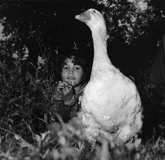 recreatiegebied spaarnwoude 1989 | foto: esther kroon